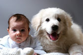 Baby and puppy — Stockfoto