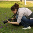 Stock Photo: Woman photographer