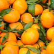 Stock Photo: Fresh picked oranges