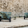 Stock Photo: Military Cannon Tanks