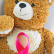 Breast Cancer Teddy Bear - Stock Photo