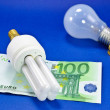 Energy saving light Bulb — Stock Photo #3036554
