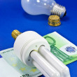 Stock Photo: Energy Saving Bulb