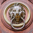 Stock Photo: Lion Head Door Knocker