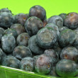 Stock Photo: Blueberries on Green