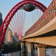 Modern  Red Bridge — Stock Photo
