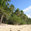 Sabang beach — Stock Photo