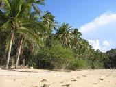 Sabang beach — Stock Photo