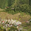 Batad rice terraces - Foto de Stock