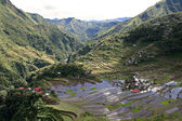 Batad landscape — Stock Photo