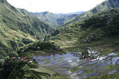 Ifugao rice terraces — Stock Photo