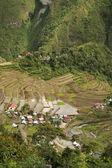Batad pirinç terasları — Stok fotoğraf