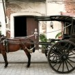 Horse drawn carriage - Stock Photo