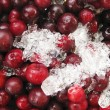 Fresh red cherries — Stock Photo #2832147