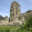 Stock Photo: Berkhamsted castle ruins hertfordshire