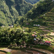 Royalty-Free Stock Photo: Ifugao village
