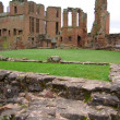 Kennilworth castle - Stock Photo