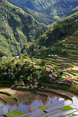 Ifugao village — Stock Photo