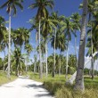 Malapascua island roads — Stock Photo