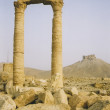 Palmyra - Stock Photo