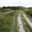 Stock Photo: Ridgeway trail