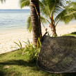 Shady hammock — Stock Photo