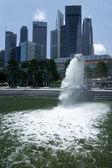 Merlion singapore — Stock Photo
