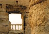 Palmyra-Spalten — Stockfoto