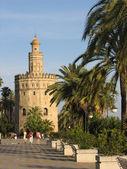Seville tower — Stock Photo