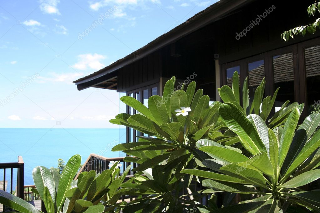 Frangipani flowers on the balcony of luxury holiday villa overlooking lamai beach on koh samui thailand — Stock Photo #2917219