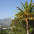 Marbella mountain — Stock Photo