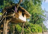Treehouse — Stock Photo