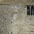 Leeds castle wall background — Stock Photo