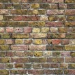 Old brick wall background — стоковое фото #2983354