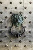 Lions head door knocker — Stock Photo