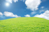 Green fiels and sky — Stock Photo