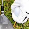 Playing Golf — Stock Photo #2843642