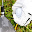 Stockfoto: Playing Golf