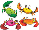 Funny crabs — Stock Vector