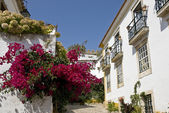 Typical street in Óbidos. — Stock Photo