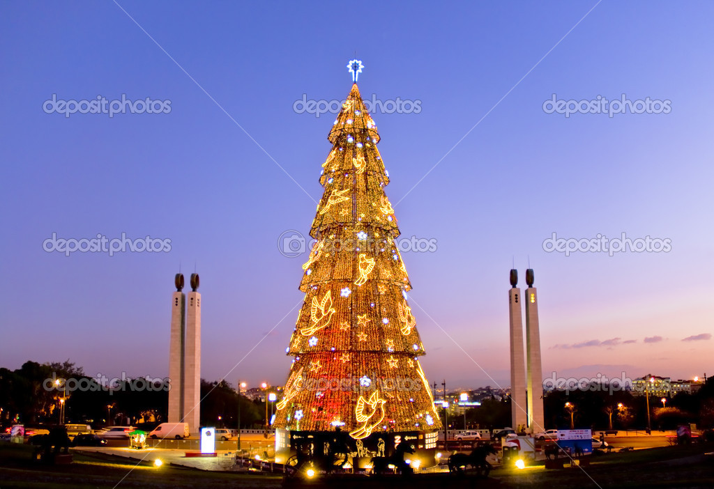Cheistmas tree, high, and illuminated by the sun in Lisbon.  Stock Photo #2847811