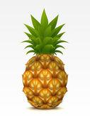 Pineapple — Stock Vector