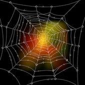 Web — Stock Vector