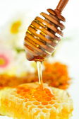 HONEY JAR AND HONEYCOMB — Stock Photo