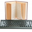Stock Photo: Keyboard and book