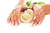 Female hands and flower — Stock Photo