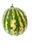 Fresh watermelon — Stock Photo