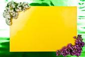 黄色贺卡 — 图库照片
