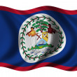 Flag of Belize — Stock Photo #2805624