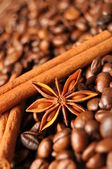 Anise, cinnamon and coffee — Stock Photo